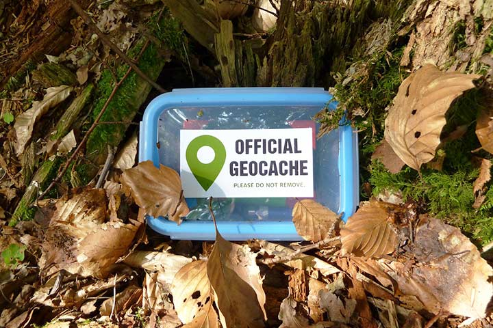 A geocaching treasure box buried in leaves